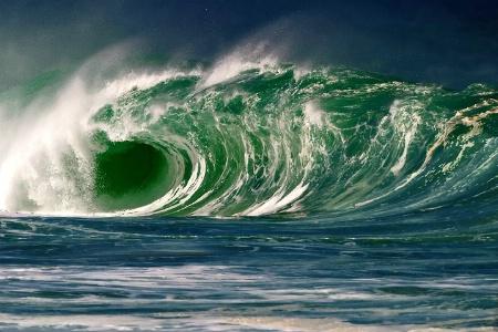 Surfer's Dream
