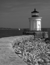 Bug Light