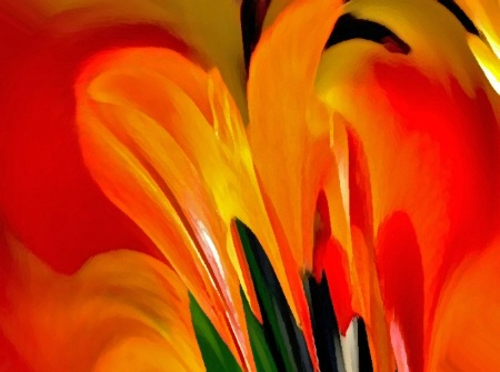 Orange Perfusion