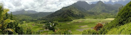 #5-C  Hanalei Overlook Panorama