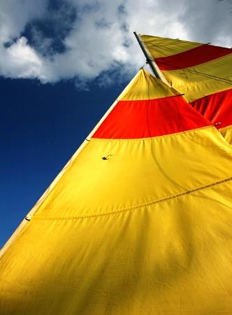 Sail Skies
