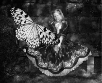 Alice in Wonderla...