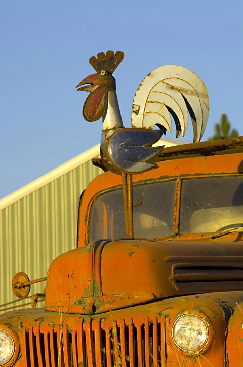 Before/Rooster on Truck