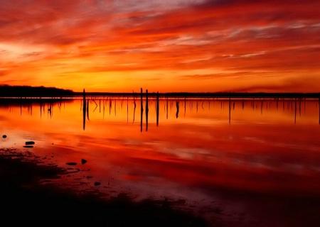 Off Shore Glow*