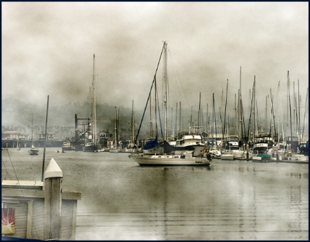 Harbor and Fog