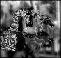 Carousel Dream Tr...
