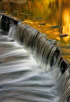 Golden Cascade