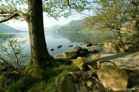 Water's Edge - Ullswater