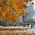 © Frieda Weise PhotoID # 6379604: Fence in Snow