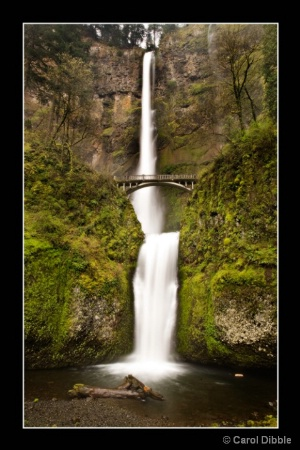 Multnomah Falls in April