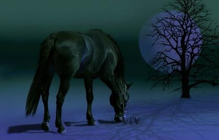 Bluish Green Night