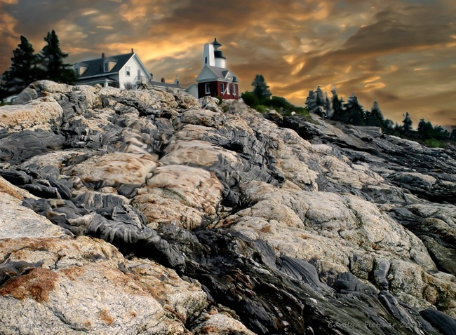 Pemaquid's Pretty!!
