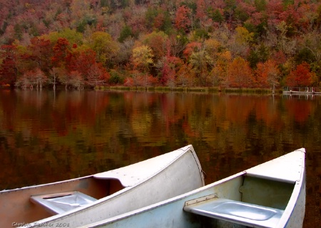 Cozy Cuddling Canoes and Colors