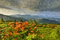 Roan Mountain Mor...