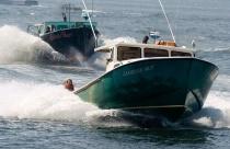 Lobster Boat Race...