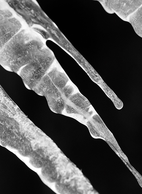 Icicle Abstract