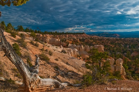 Morning at Bryce Canyon