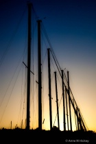 The Masts at Sunset