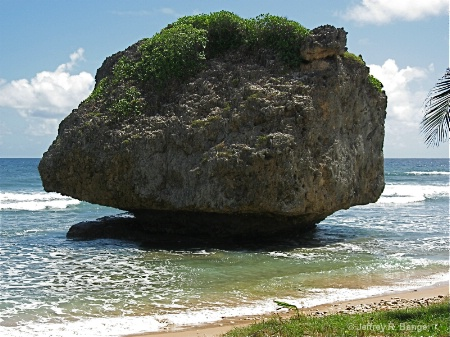 """Bathsheba Rock - Barbados"
