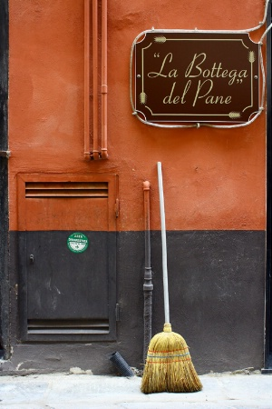 Broom in Albenga
