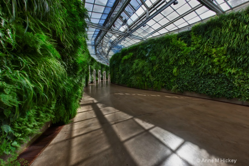 The Green Wall