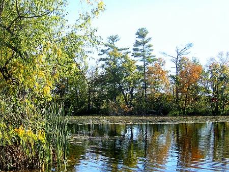 Paul's Lake Island