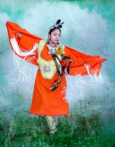 Fancy Shawl Dancer