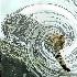 © Zita A. Strother PhotoID# 12694462: Cat Fishing