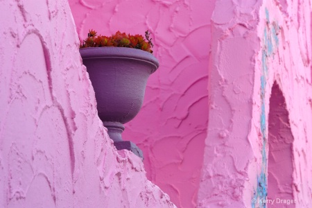 Pink Wall and Colorful Pot