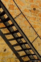 Stairway and Shadow