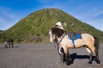 Mount Bromo Regio...