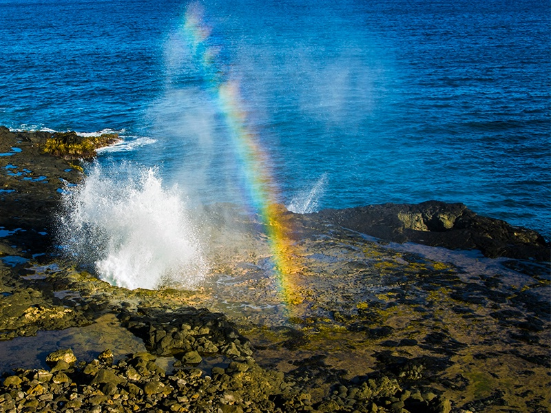 Spouting Rainbows