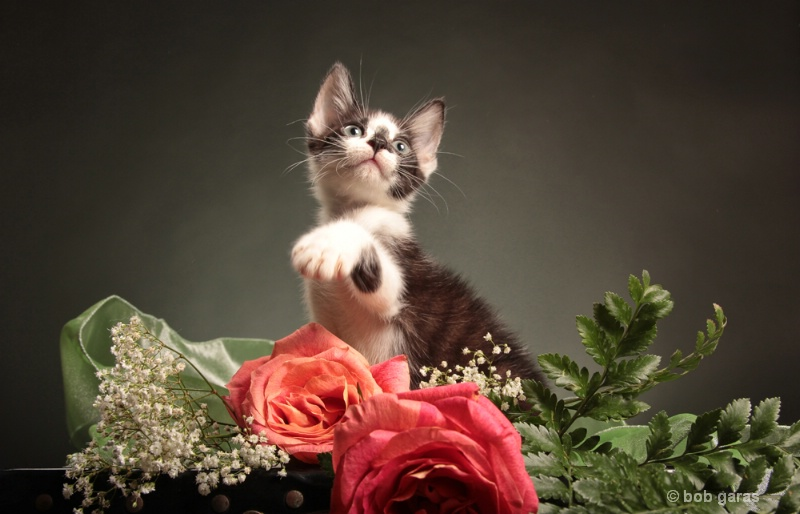 aaaww  you shoudn't have........