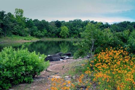 Bunny Creek Fishing Area