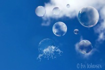 Bursting Soap Bubble
