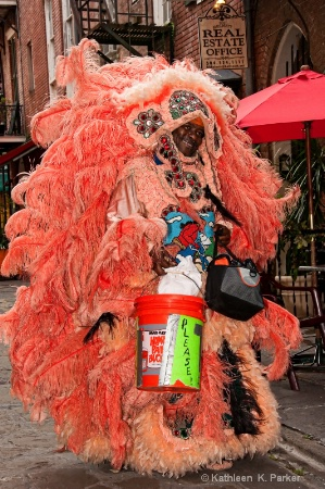 Mardi Gras Indian in Pirate's Alley New Orlean