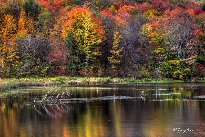 The Colors of Quaker Lake