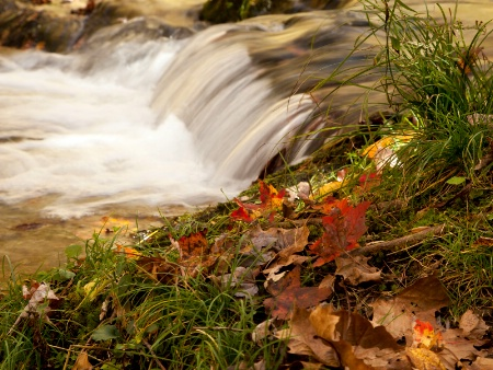 Autumn In The Smokies