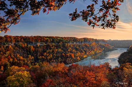 The Niagara Gorge