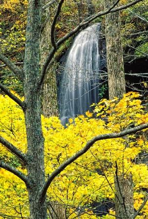 Oirase Falls