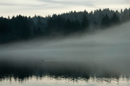 Evening Mist on Eckman Lake