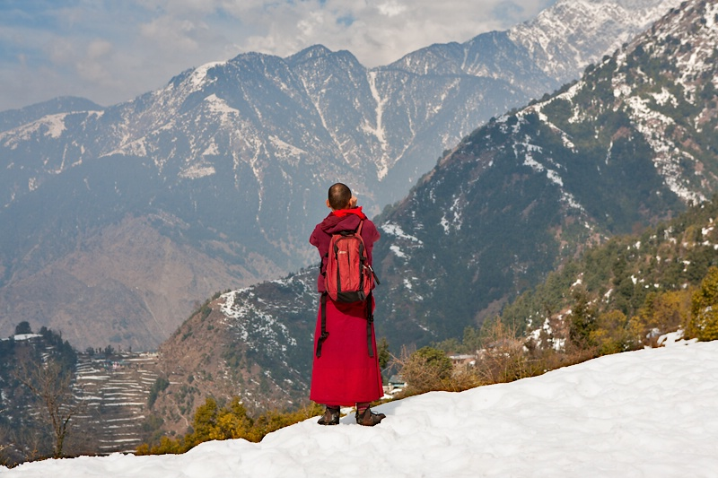 The Monk in Mcleodganj