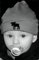 The Moose Cutie