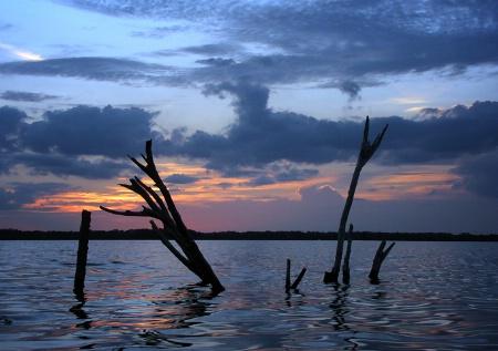 Skewered Sunset
