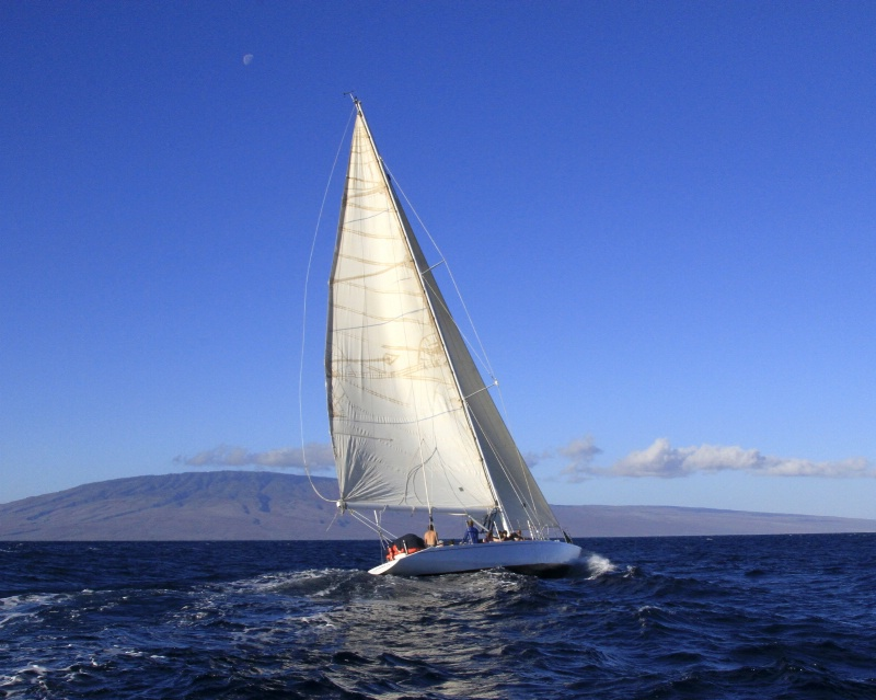 ~Morning Maui Sailing~