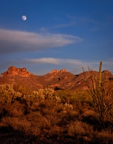 Arizona Desert Moonrise