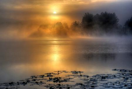 Good Morning  Red House Lake