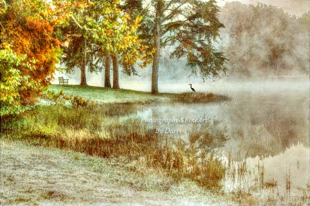 Autumns Frost