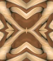 Wooden Enlay Abstract