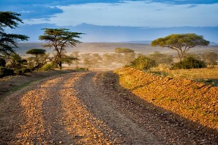 A glimpse of Masai Mara